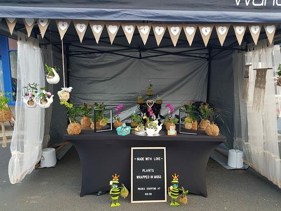 New Norfolk Market: Kazza's decor plants