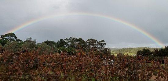 Isla Waiheke, Nueva Zelanda: 20180421_153628_large.jpg