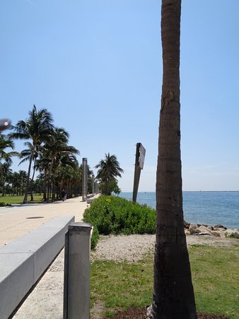 Parque South Pointe: view from the park - looking up towards Ocean Dr