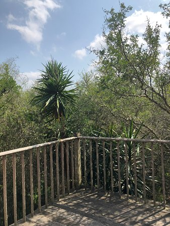 Los Fresnos, TX: This was the balcony off the master bedroom upstairs.