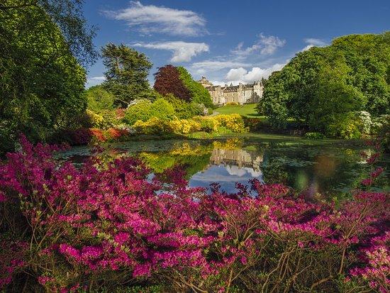 Garden Centre: Hotel Reviews, Photos & Prices