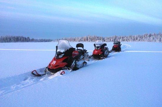Safari in motoslitta sulla Tundra