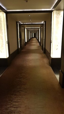 Park Hyatt Hyderabad: 20180420_195158_large.jpg