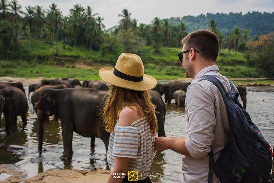 Ceylon Insider Travels