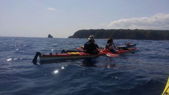 Kunigami-gun, Japan: Yanbaru, Higashi Untouched Coast Tour