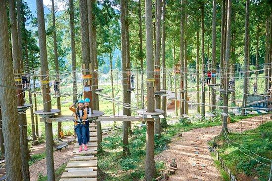 Ikeda-cho, Japan: ディスカバリーコースで森を楽しくピクニック!