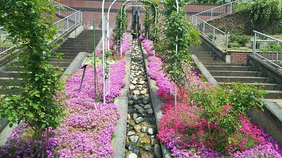 Handayama Botany