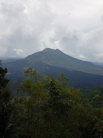 תמונה מDewa Bali Tours