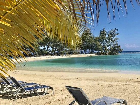 French Harbour, Honduras: IMG-e712a8b976977d6d7aa6a295d80b8430-V_large.jpg