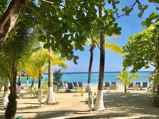 French Harbour, Honduras: IMG-714f644a251ab74439addfb78fabf02e-V_large.jpg
