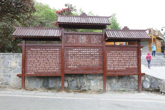 Bijie, Çin: Sign