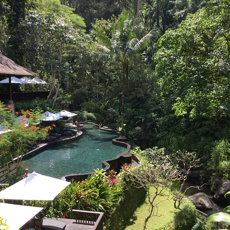 Maya Ubud Resort & Spa: photo3.jpg