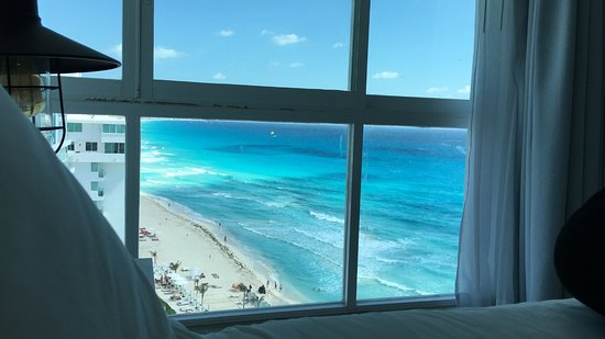 view from the lagoon suite! (we were lucky to get views of