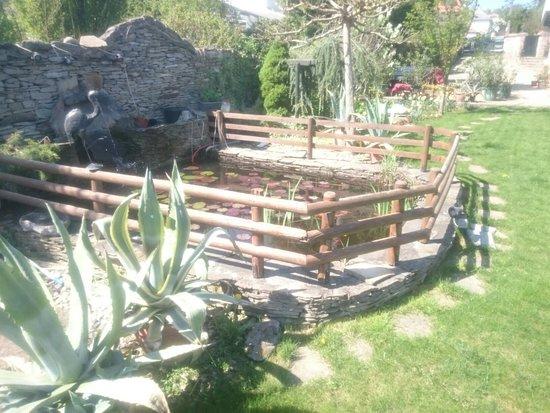 garden picture of kaktusz villa heviz heviz tripadvisor. Black Bedroom Furniture Sets. Home Design Ideas