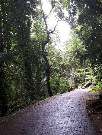 Grand Anse: 20180421_110605_large.jpg