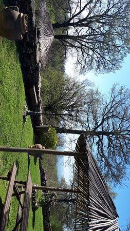 Semproniano, Italy: IMG-20180422-WA0004_large.jpg