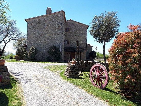 Semproniano, Italy: 20180421_124841_large.jpg