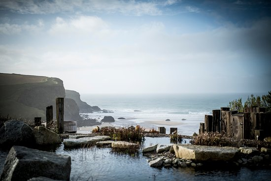 Mawgan Porth, UK: Our outdoor pool is naturally filtered by reed beds