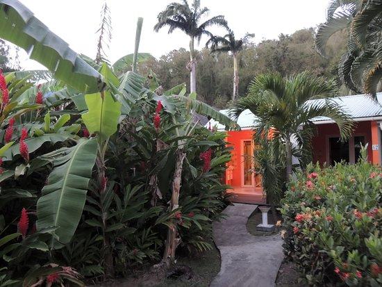 Fleurs des Iles : Accès au bungalow