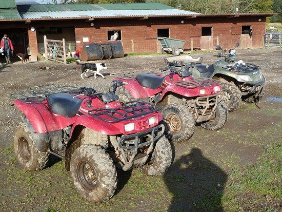 Rookin House Activity Centre: Quad bikes