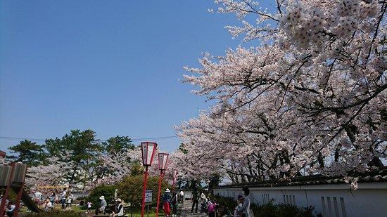 Honjo Park
