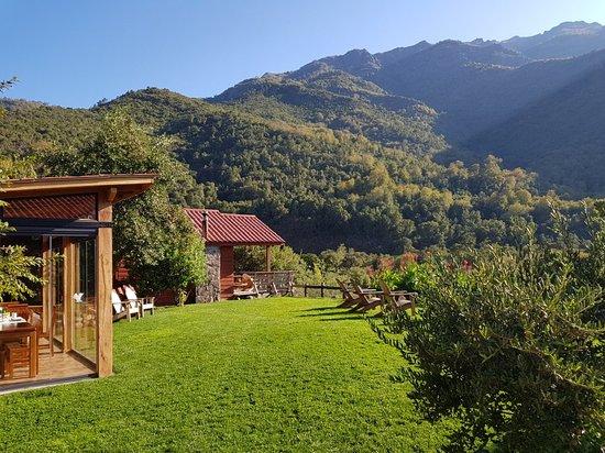 Regione del Maule, Cile: 20180422_104856_large.jpg