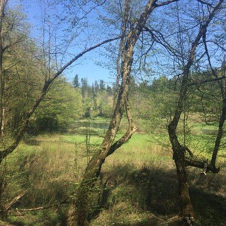 Rakov Skocjan Valley: photo4.jpg