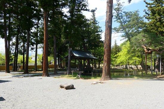 Kogaku-ji Temple: 平日なのかひっそり静かでした。