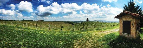 Vaglio Serra, Italia: getlstd_property_photo