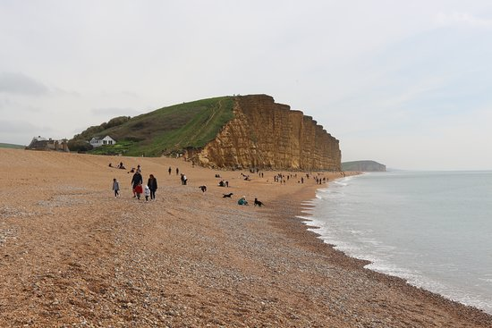Rousdon, UK: Nearby West Bay