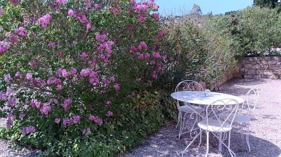 Tourrettes, France: Pause dans le jardin