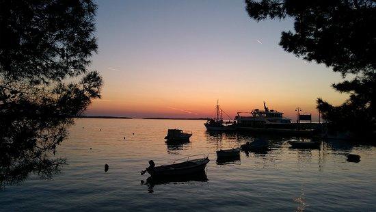 Fazana, Kroatien: IMG_20180420_200451_large.jpg