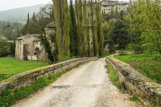 Sant'Anatolia di Narco, Italia: Abbazia.