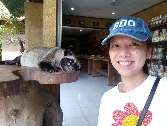 Фотография Private Bali Tour: Kintamani Tour with Lunch