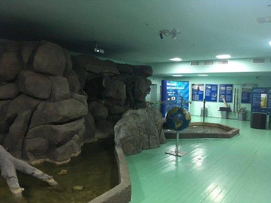 Музей воды - Изображение Музей воды, Киев - Tripadvisor