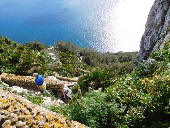 Mediterranean Steps: Aufstieg...