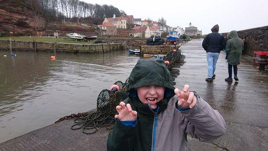 West Wemyss, UK: Harbour walk in the rain