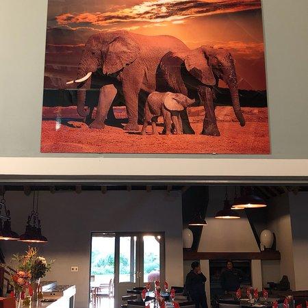 Addo, Sudáfrica: photo6.jpg
