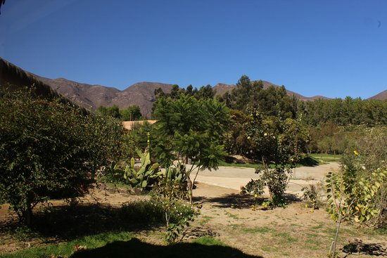 El Molle, Chile: Entorno