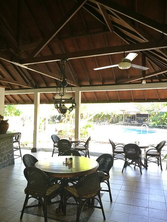 Rini Hotel: Pool from dining room
