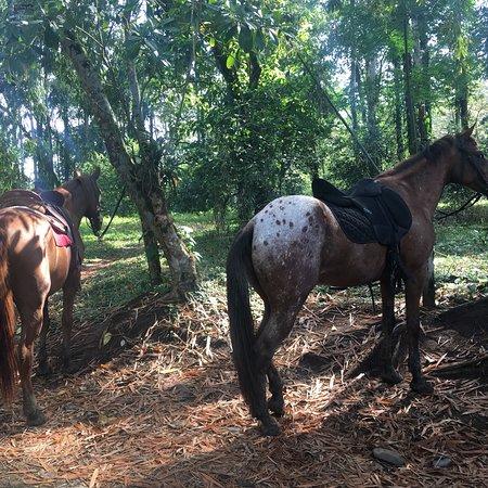 Коклес, Коста-Рика: photo1.jpg