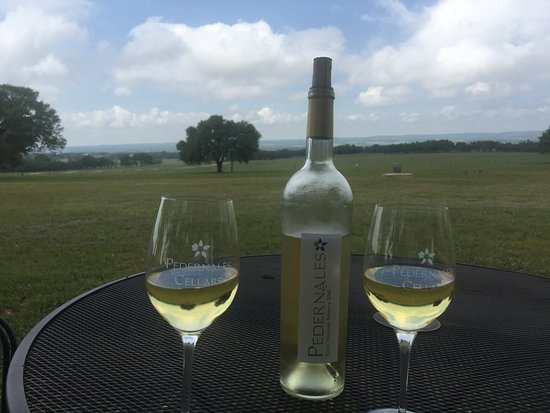 Stonewall, TX: our favorite wine of the tasting and a view