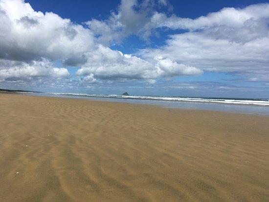 Cape Reinga Adventures Day Tours: 90 Mile Beach
