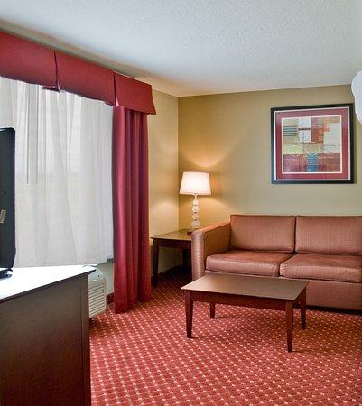 Holiday Inn Express Orlando - South Davenport: Suite
