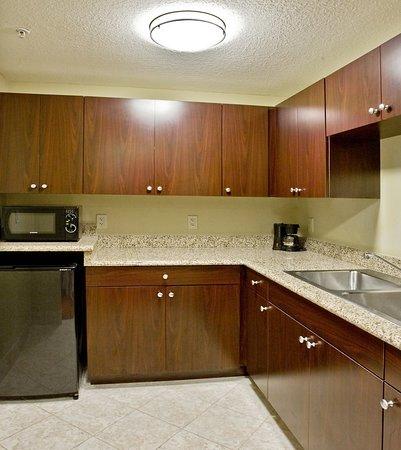 Holiday Inn Express Orlando - South Davenport: Guest room amenity