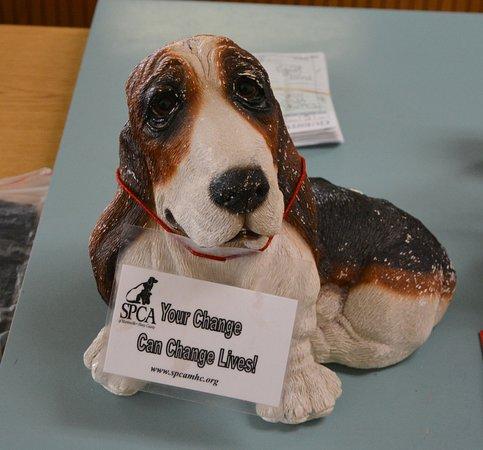 Ridgeway, VA: Support the SPCA