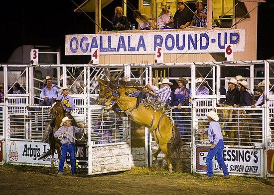 Ogallala, NE: Other
