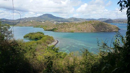 Le Lamentin, Martinique: Rando'Apéro : randonnée au Vauclin puis dégustation de gourmandises salées et sucrées