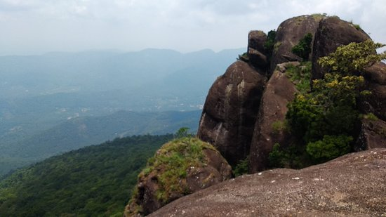Idukki, India: IMG_20180422_125524_large.jpg