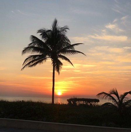 Paradise Oceanfront Hotel Φωτογραφία